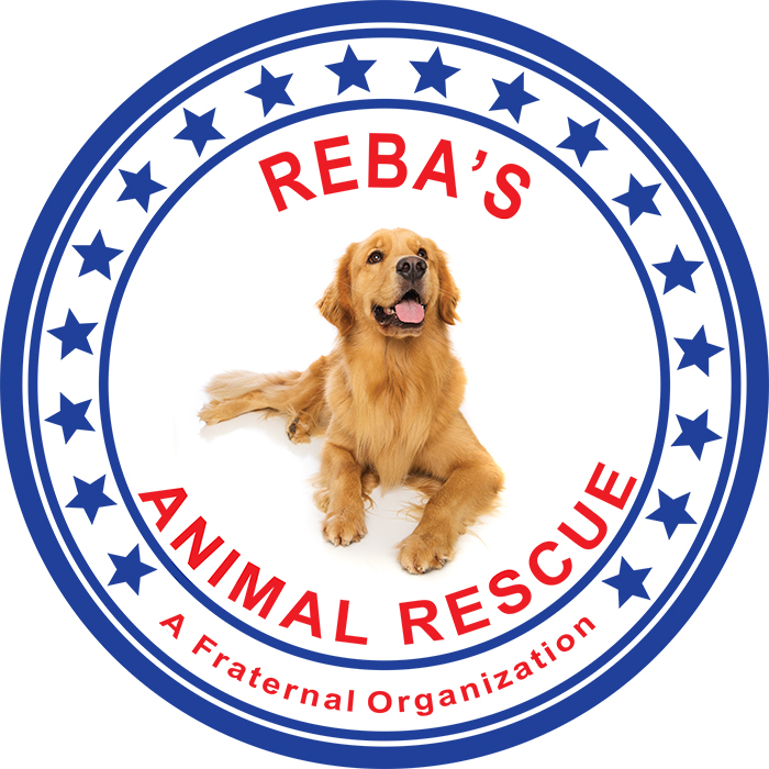 Rebas Rescue